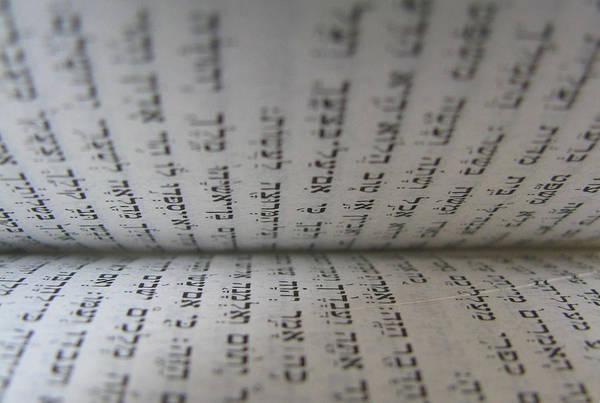 Photograph - The Torah by Ericamaxine Price