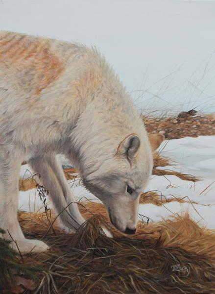 Painting - The Tracker by Tammy Taylor