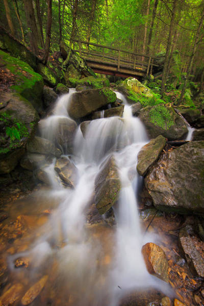 Photograph - The Trail Falls  by Emmanuel Panagiotakis