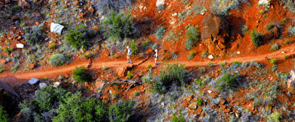 Wall Art - Photograph - The Trail Hikers by David Lee Thompson