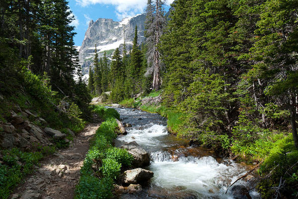 Photograph - The Trail To Odessa Lake by Cascade Colors