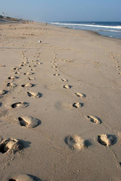 Photograph - The Trails Of Footprints - Jersey Shore by Angie Tirado
