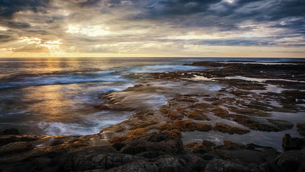 Photograph - The Tranquil Seas by Susan Rissi Tregoning