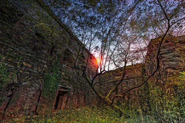 Photograph - The Tree In The Fort - L'albero Tra Le Mura Del Forte by Enrico Pelos