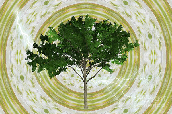 Digital Art - The Tree Of Life by Donna L Munro