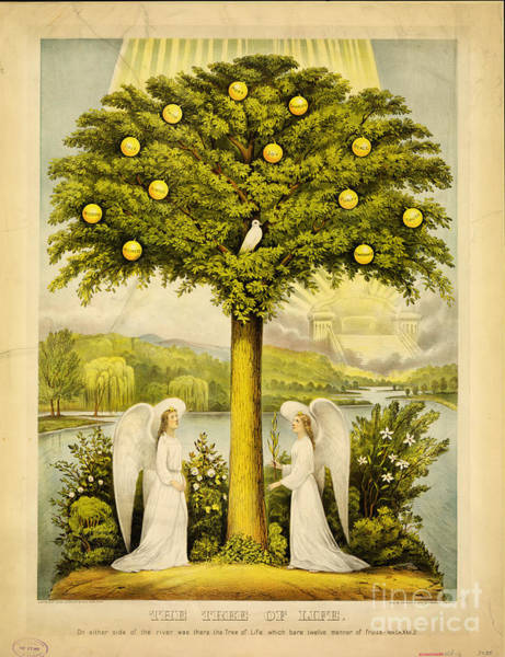 Ch Painting - The Tree Of Life On Either Side Of The River by Celestial Images