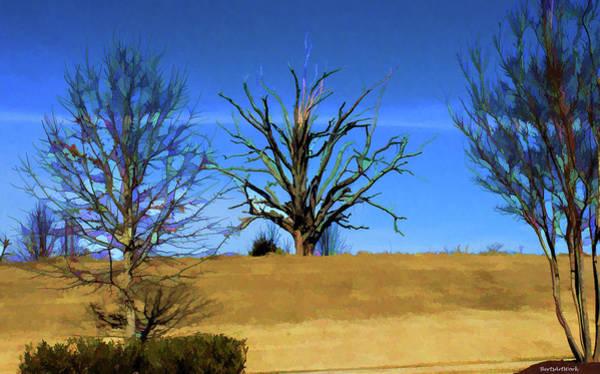 Photograph - The Tree by Roberta Byram