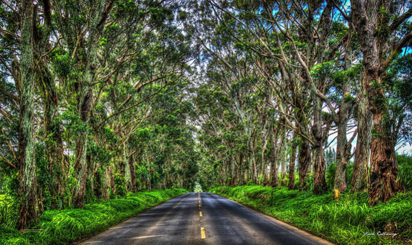 Photograph - The Tree Tunnel South Shore Kauai Hawaii Eucalyptus Tree Art by Reid Callaway