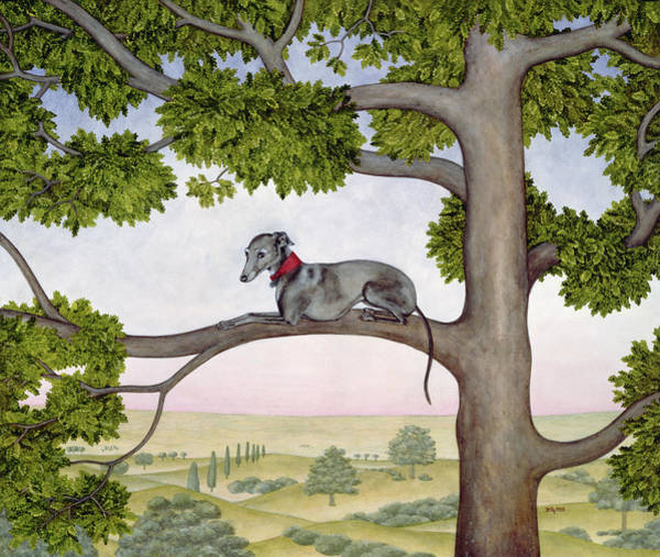 Wall Art - Painting - The Tree Whippet by Ditz