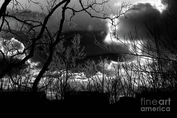 Photograph - The Twilight Zone by Karen Adams