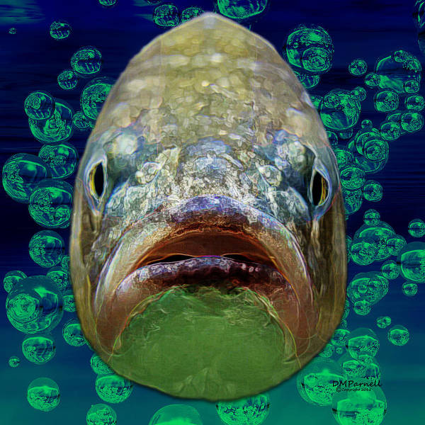 Sportsman Digital Art - The Ugliest Fish Ever by Diane Parnell