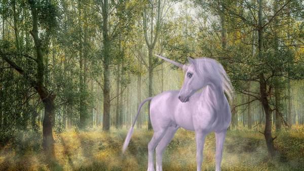 Mixed Media - The Unicorn by Joy of Life Art Gallery
