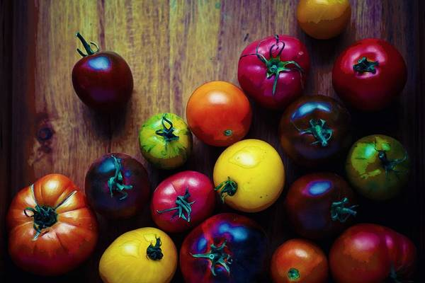Wall Art - Painting - The United Colors Of Tomatoes by Celestial Images