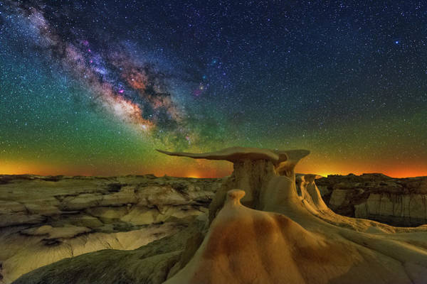 Photograph - The Universe On A Wing by Ralf Rohner
