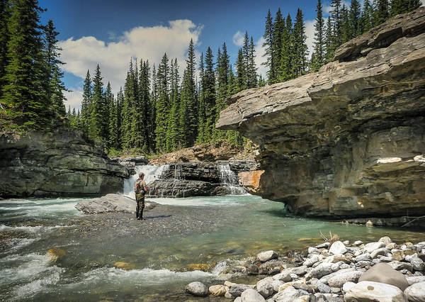 Photograph - The Upper Falls by Philip Rispin