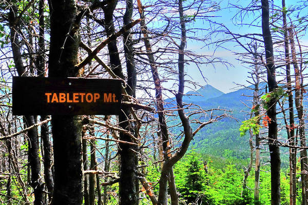 Photograph - The View From Tabletop Mountain Adirondacks Upstate New York Sign by Toby McGuire