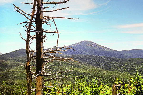 Photograph - The View From Tabletop Mountain Adirondacks Upstate New York by Toby McGuire