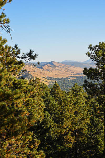 Photograph - The View From The Flatirons Looking Down On Boulder, Co Pine Trees by Toby McGuire