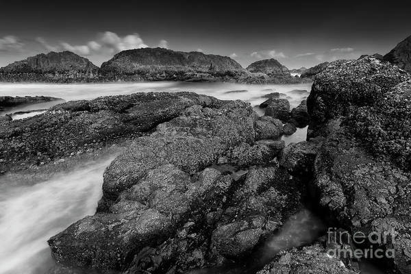 Outstanding Photograph - The View From The Rocks by Masako Metz