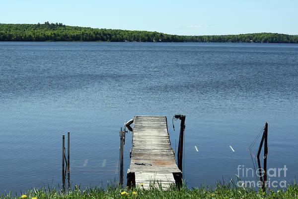 Madawaska Lake Photograph - The Vigil by William Tasker