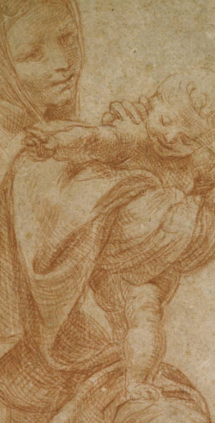 Crayon Drawing - The Virgin And Child by Lodovico Carracci