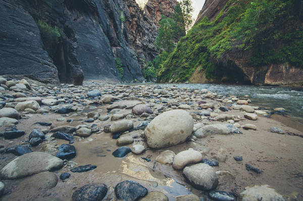 Photograph - The Virgin River by Margaret Pitcher