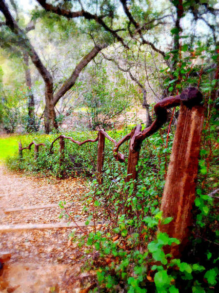 Mixed Media - The Crooked Rail - Descanso Gardens by Glenn McCarthy Art and Photography