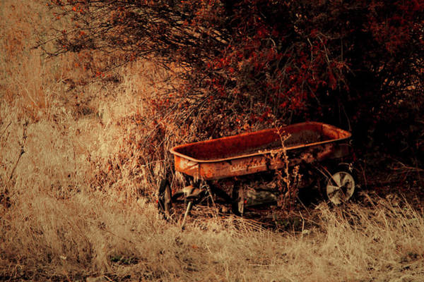 Photograph - The Wagon by Troy Stapek