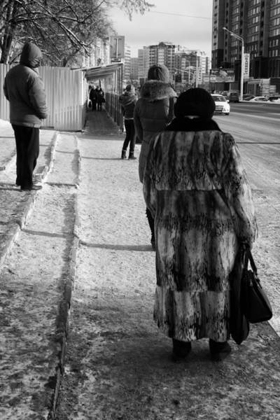 Photograph - Fur Coat Waiting For A Bus  by John Williams