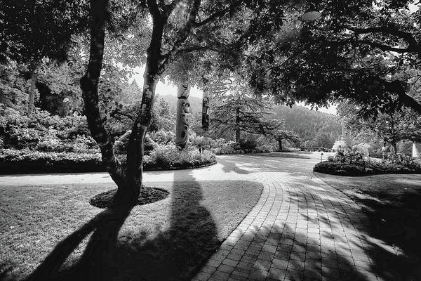 Photograph - The Walkway Bw by Lawrence Christopher