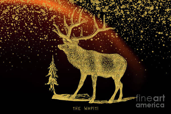 Mixed Media - The Wapiti by Angela Doelling AD DESIGN Photo and PhotoArt