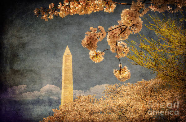 Photograph - The Washington Monument by Lois Bryan