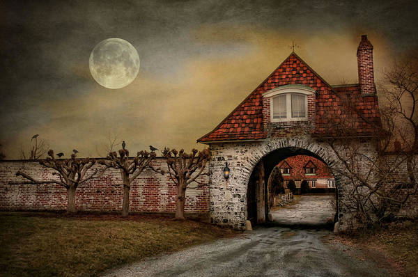 Photograph - The Watcher by Robin-Lee Vieira