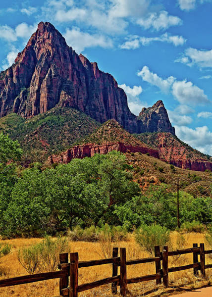 Photograph - The Watchman by Levin Rodriguez