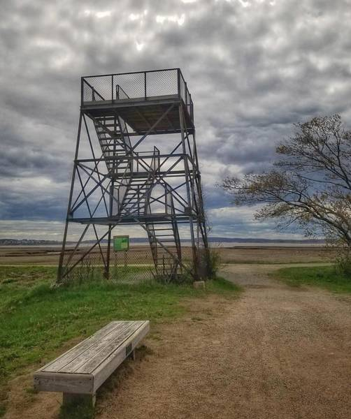 Photograph - The Watchtower  by Mary Capriole