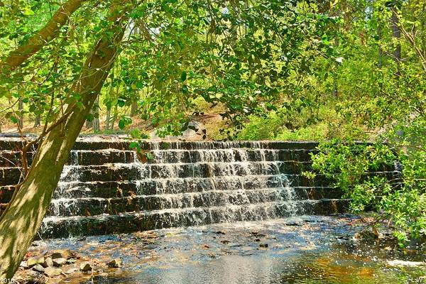 Photograph - The Waterfall At Sesquicentennial State Park by Lisa Wooten