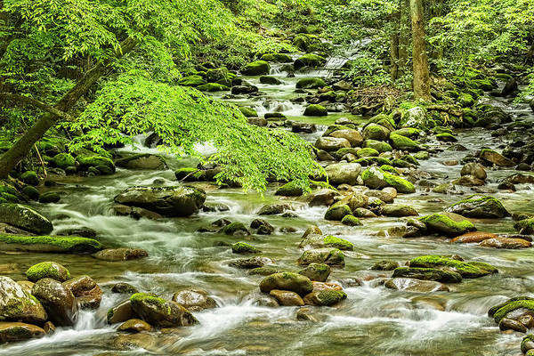 Photograph - The Waterfalls Of The Smokies In The Spring by Kay Brewer