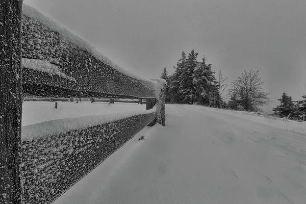 Photograph - The Way Into The Winter by Andreas Levi
