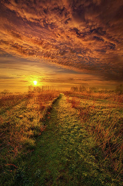 Photograph - The Way The Truth And The Life by Phil Koch