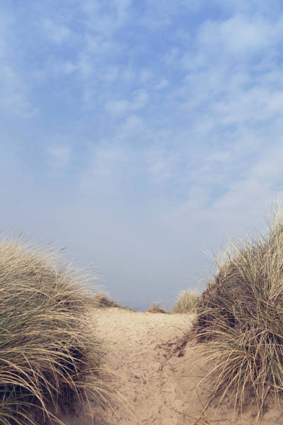 Photograph - The Way To The Beach II by Maria Heyens