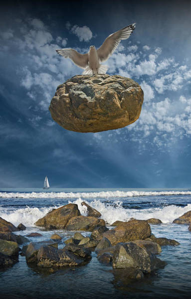 Photograph - The Weight Is Lifted By Flying Gull by Randall Nyhof