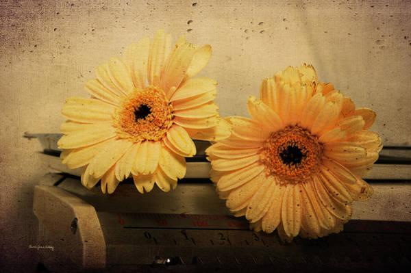 Photograph - The Weight Of Two by Randi Grace Nilsberg