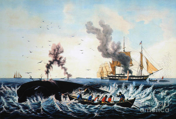 Painting - The Whale Fishery, by Granger