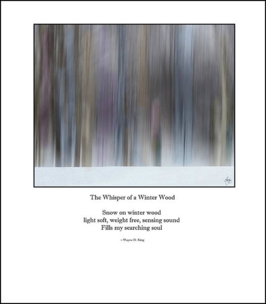 Photograph - The Whisper Of A Winter Wood Redux Haiku Poem by Wayne King