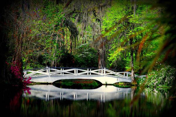 The White Bridge In Magnolia Gardens Sc Art Print