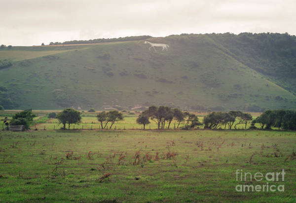 Photograph - The White Horse Of Littlington by Perry Rodriguez