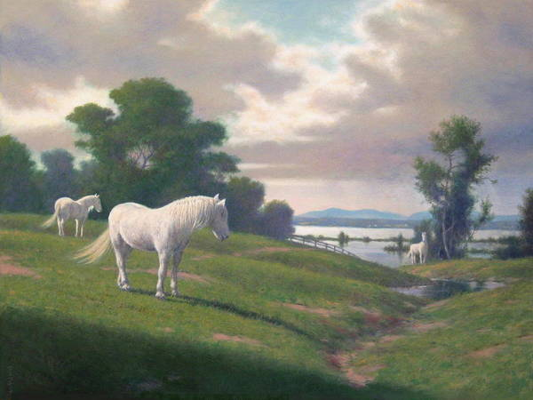 Wall Art - Painting - The White Horses Of Annandale by Barry DeBaun