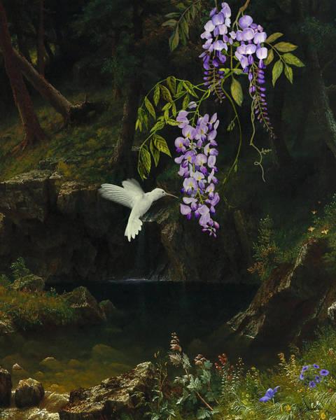 Rocky Mountain Digital Art - The White Hummingbird by M Spadecaller