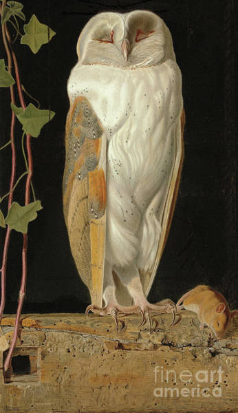 Poetry Painting - The White Owl by William J Webbe