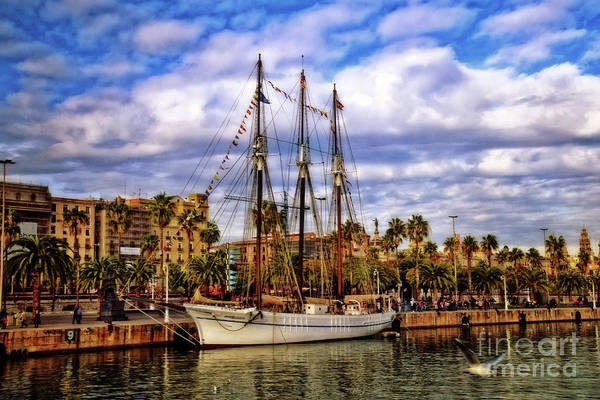 Wall Art - Photograph - The White Schooner - Revisited by Mary Machare
